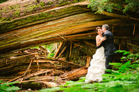 Andrea & Clarke After Wedding Session at the Ancient Forest ~ Prince George BC