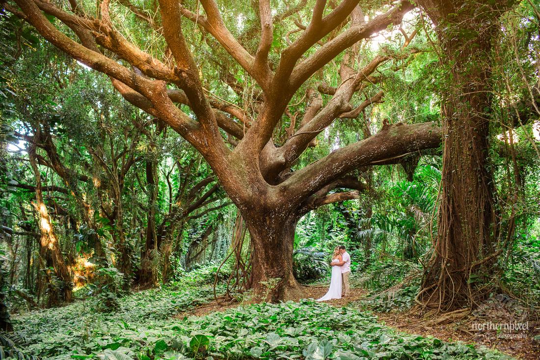 Maui Wedding Photographers, Maui After Wedding Photo Session, Prince George Photographer